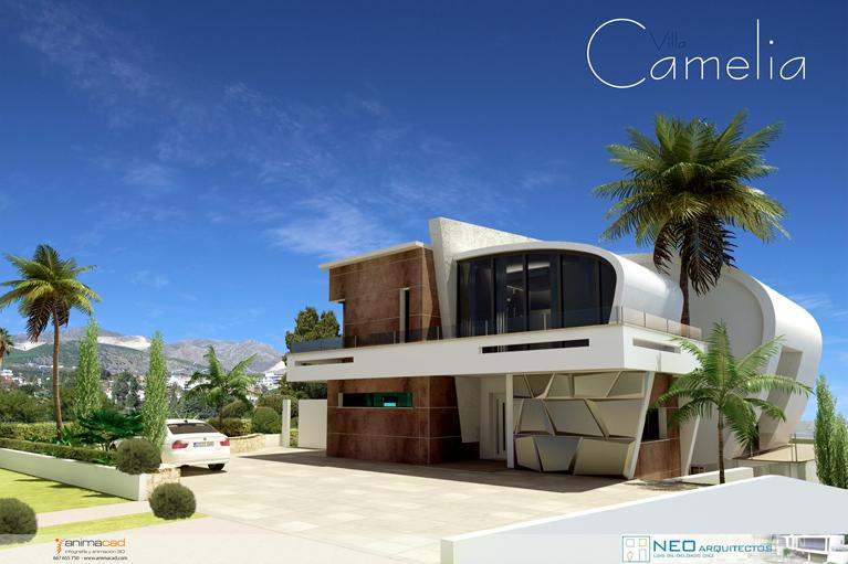 Camelia-1