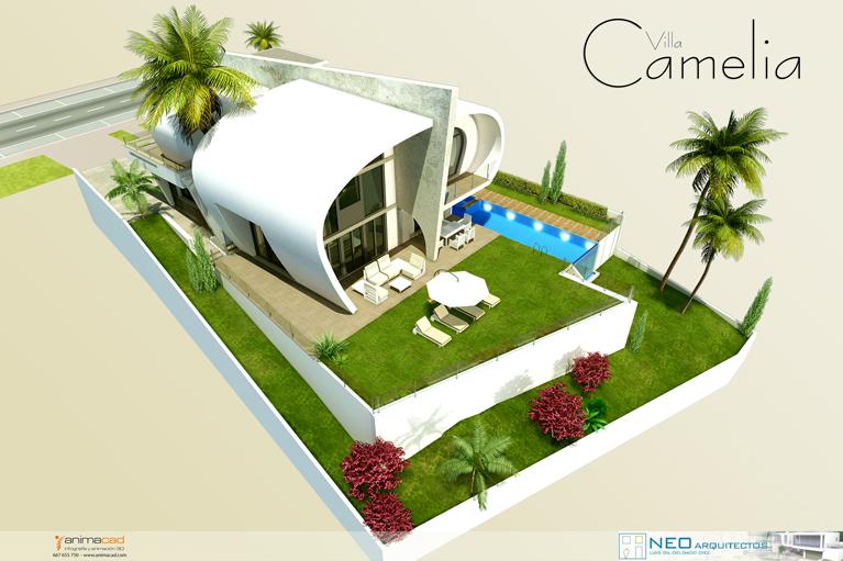 Camelia-3
